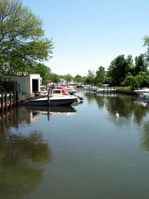 Photo: Bay Shore creek