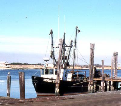 Photo: Doxsee Clam Boat