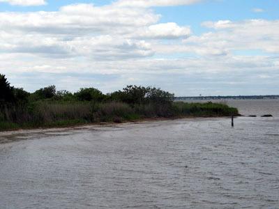 Photo: Long Island Marshes
