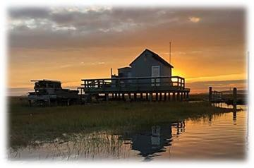From the Edge of the Marsh Cover Photo